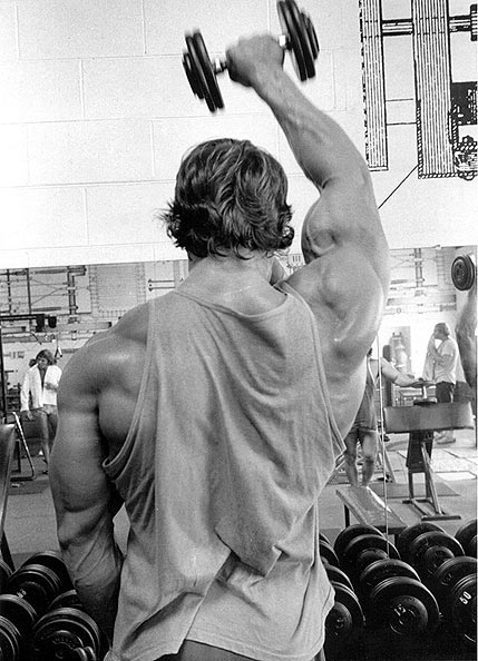 arnold-shoulder-workout-bodybuilding-dieselsc-com