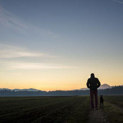 dieselsc-com-walking-dark-road